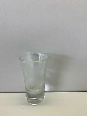 Disney Park Mickey Mouse Head Mickey Ears Frosted Etched Shot Glass Shooter