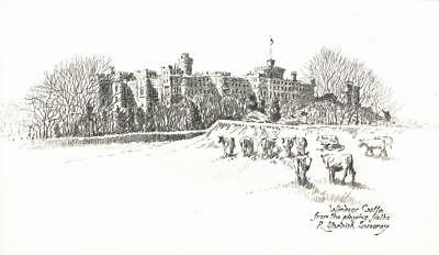 ROBERT STANDISH-SWEENEY Pencil Drawing WINDSOR CASTLE FROM PLAYING FIELDS