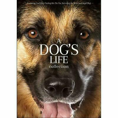 A Dog's Life Collection(DVD - 4 movie set) ~ New & Factory Sealed!
