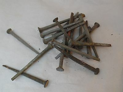 Antique Square Nails 265mm x 5mm 20 Count