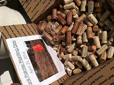 Natural Wine Corks - No Champ Synth-Over 600/Box - All Sales Help Save Trees
