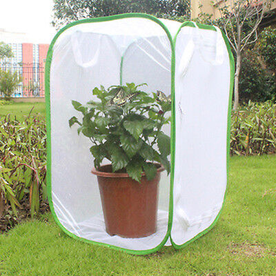 Collapsible Insect Butterfly Habitat Terrarium Cage Praying Mantis Critter RU