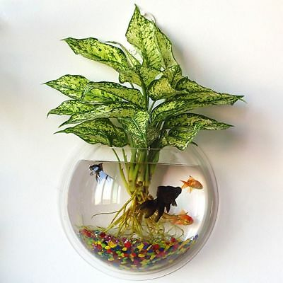 Aquarium Tenture Fish Bowl Flowerpot murale 230ml Fish Tank BK2X