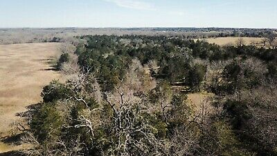 38 Acres of Land in Fayette County, Texas w/Mineral Rights (near La Grange, TX.)