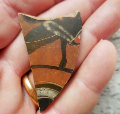 Fine Ancient Greek Painted Pottery Fragment Hoofed Animal 500Bc Found France