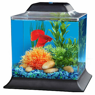 Imagitarium 1.4 Gallon Betta Aquarium