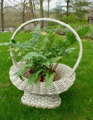 Antique Vintage White Wicker Basket Woven French Florist Wedding Shabby Chic