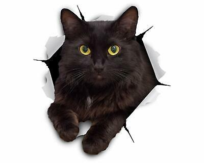 Winston & Bear 3D Cat Stickers - 2 Pack - Cheeky Black Cat Decals for Wall