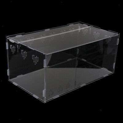 Faunarium Spider Insect Reptile Tank Vivarium Cage Nursery Carry Transport