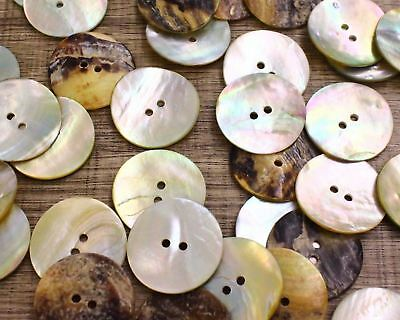 """Real Shell Button Lot 30 40L 1"""" 25mm JAPAN Mother of Pearl MOP Crafts Sewing DIY"""