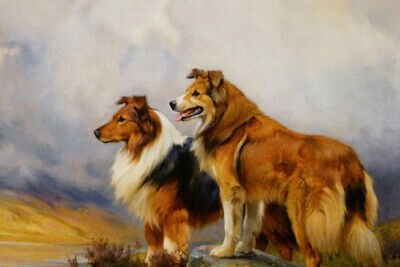 Two Border Collie Dogs in Landscape Animals Pet Dog Family Love Oil Painting