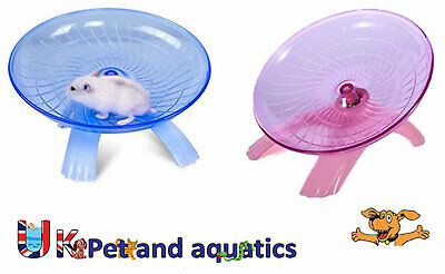 Rodent Saucer Play Wheel, Free Standing, Small, Large, Pink or Blue
