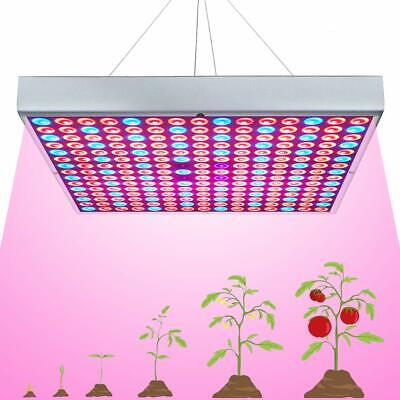 600W LED Grow Light for Indoor Plants Growing Lamp 225 LEDs Full Spectrum Lights