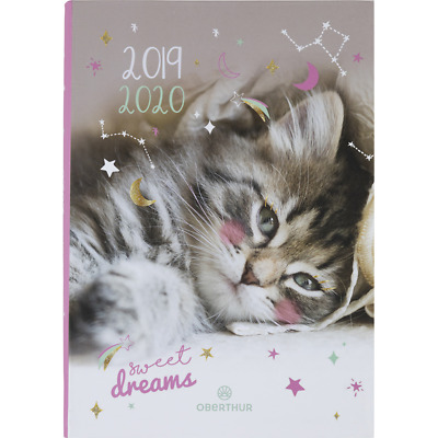 "Agenda scolaire ""Chaton"" - Sweet Dreams - 2019/2020"