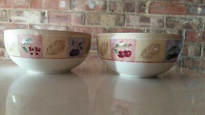 Marks and Spencer Wild Fruits 2 Cereal Bowls