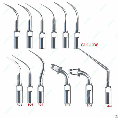 12 Dental Scaling Perio Endo Tips fit DTE SATELEC Ultrasonic Scaler Handpiece