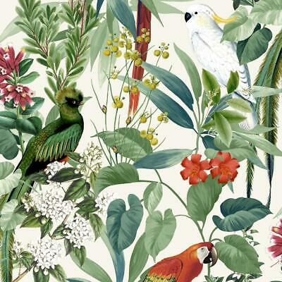Jungle Birds Wallpaper Tropical Parrots Floral Tree Green White Vinyl Paste Wall