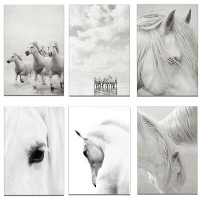 White Horse Canvas Print Poster Bedroom Living Room Wall Picture Home Decor