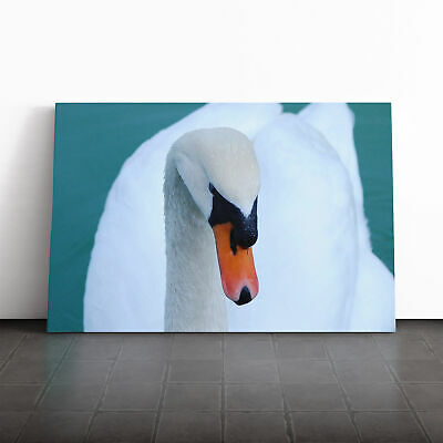 Canvas Wall Art Picture Print White Swan on a Lake (2)