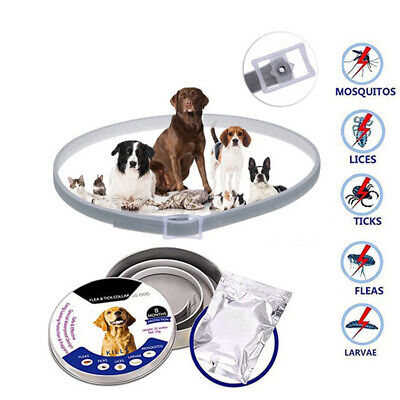 1pc Adjustable Flea and Tick Collar Small Medium Large Dogs 8 Month Protect CR