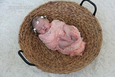 Reborn Baby Girl Doll Journey by Laura Lee Eagles