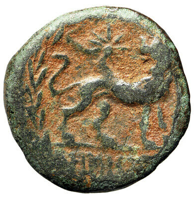"""LION Greek Coin of Miletos in Ionia """"Gazing Upon Star"""" CERTIFIED GENUINE Leo"""