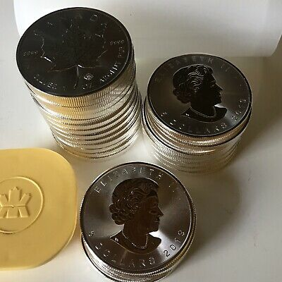 25x 1 OZ / UNZEN 25 MAPLE LEAF 2019 IM TUBE STEMPELGLANZ TOP ZUSTAND 778 GRAMM