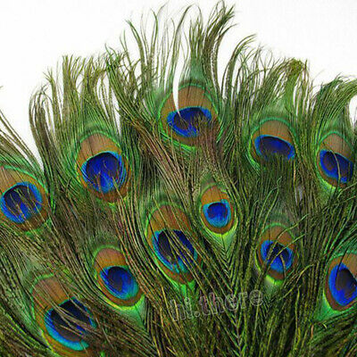 10-100pcs Real Natural Peacock Tail Eyes Feather 8-12 Inch For Xmas Home Decor