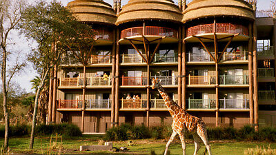 2019 DVC Rental $17 per point up to 525 points - Disney Vacation Club