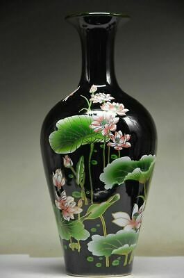 Beautiful Chinese Porcelain Handwork Painting Lotus & Dragonfly Vase