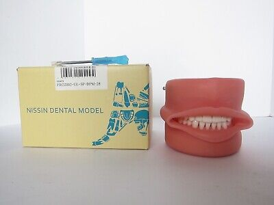 New Nissin Dental Model Pro2002-Ul-Sp-Dpm-28