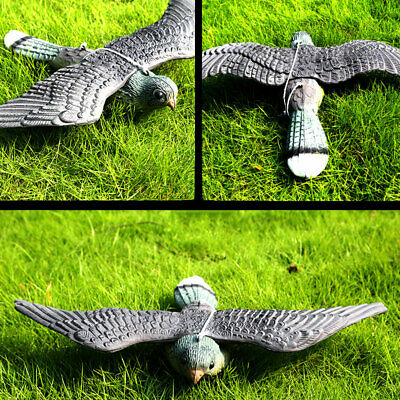 Flying Hawk Pest Deterrent Fake Bird Hunting Decoy Scarer Repeller Garden Decor