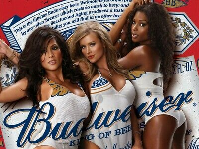 """Budweiser Beer Advertise Sexy Women Mancave Sign 13""""X19"""" Size Poster Print #7"""