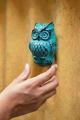 Pastel Country Turquoise Abstruse Owl Front Door Knocker