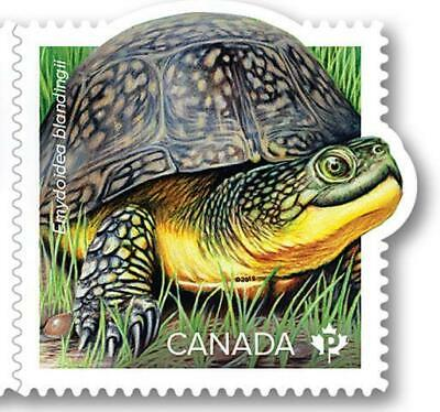 2019 Canada 📭 ENDANGERED TURTLES 🐢 BLANDING TURTLE  🐢MNH Stamp from Booklet📬