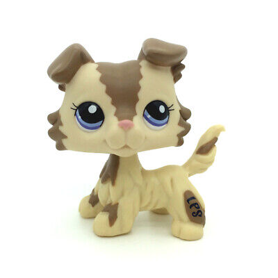 petshop pet shop LPS rare chien chat européen colley teckel dog cat série#2210