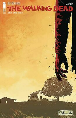 Walking Dead #193 1St Print Shipped Bagged, Boarded In A Comics Mailer