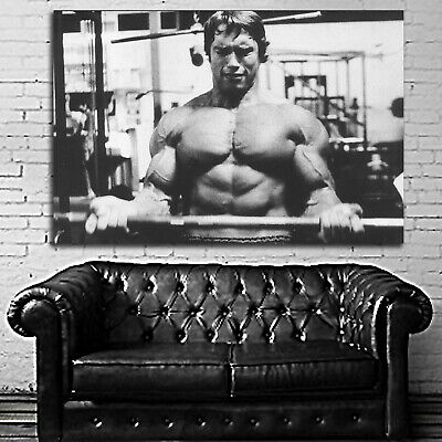 #27 Arnold Schwarzenegger Fitness Poster Large 40x60 inch More Size Available