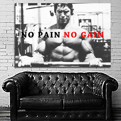 #05 Arnold Schwarzenegger Poster Fitness Muscle Gym 40x60 inch More Size Large