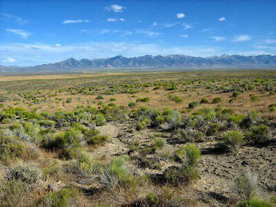Super Rare Area! 40 Acre Nevada Ranch  Only $295 Down & 0% Int. No Credit Check!