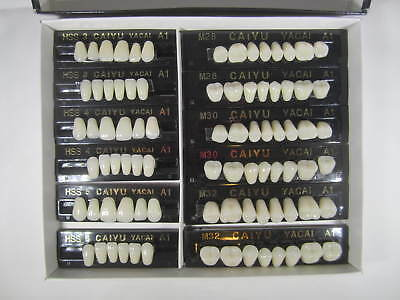 3 Complete Sets Acrylic Denture Teeth A1 Size  Large Medium Small In One Box