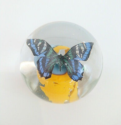 Murano Glas Briefbeschwerer SCHMETTERLING Glass Paperweight Italy Butterfly Rare