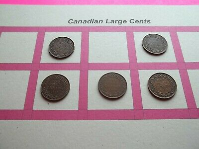 Lot of 5 Canadian Large Cents 1914, 1916, 1917, 1918, 1920   (CLC24)