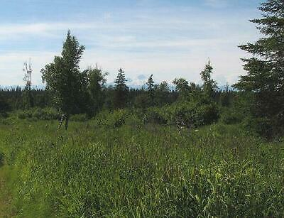 $199 Down Start Bid! 17+ Acres With Mountain Views & Pond Near Homer- No Qualify