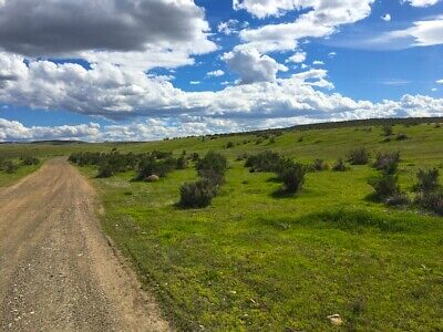 Rare 40 Acre Nevada Ranch! Ez Access~Paved Road~Surveyed! Cash Sale! No Reserve!