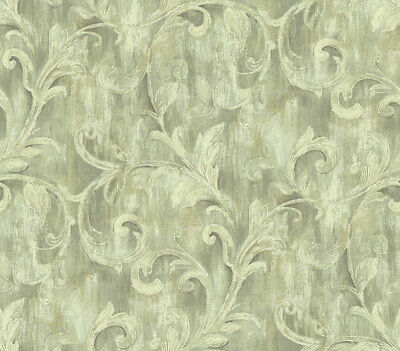 Painterly Acanthus Wallpaper in Antique Linen AR30102 from Wallquest