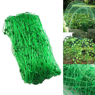 Garden Anti Bird Insect Netting Climb Plant Support Fruit Protector Mesh 1.7*18M