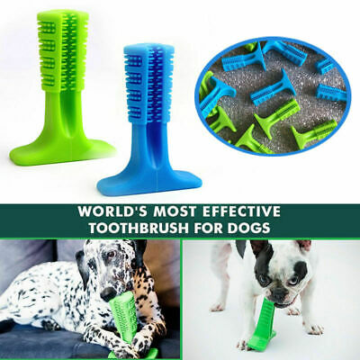 Bristly Brushing Stick Worlds Most Effective Toothbrush for Dogs Pets Oral Care