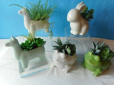 Artificial Succulent Arrangement-Frog-Llama-Bunny Succulent Arrangments