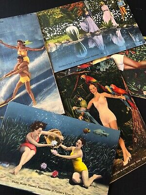 Florida Postcards Bathing Beauties Southern Belles Pretty Girls lot of 14